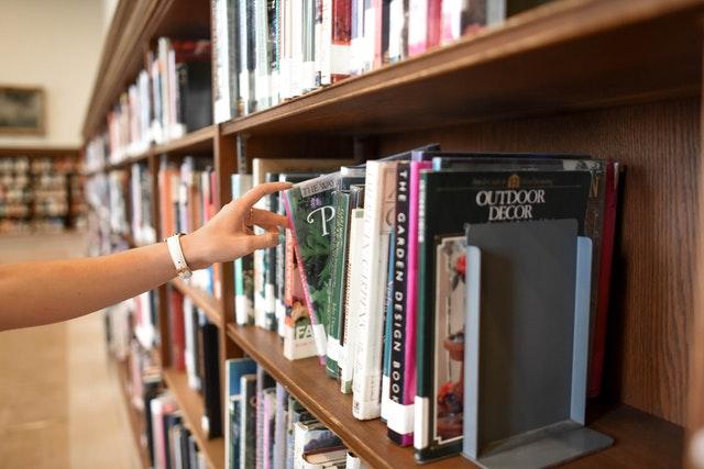 סטודנטית מחפשת חומר בספריה לכתיבת עבודות סמינריון במשפטים